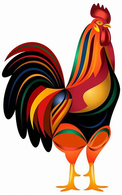 Rooster Transparent Clip Clipart Animated Drawings Background