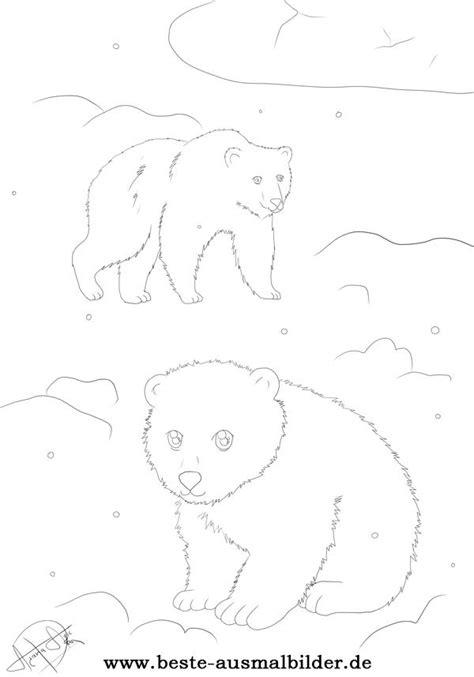 eisbaer ausmalbilder malvorlagen von polarbaeren und