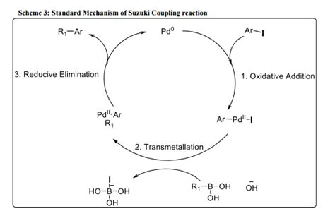 Suzuki Coupling Reaction by Solved Draw The Cyclic Mechanism For The Suzuki Coupling