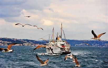 Bosphorus Strait Ferry Istanbul Turkey Wallpapers