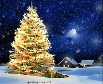 Christmas Animated Greetings Merry Gifs Happy Tree