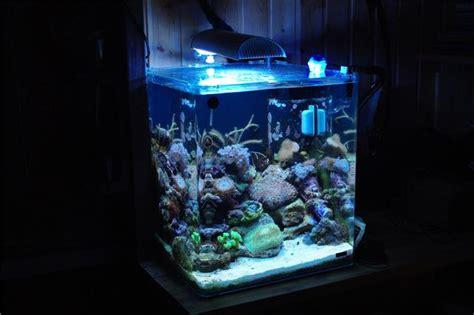aquarium d eau de mer prix aquarium eau de mer complete nano cube poissons autres animaux aquatiques j annonce