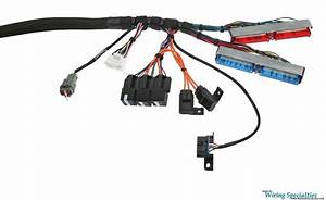Bmw E46 Ls1 Wiring Harness