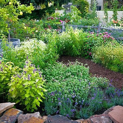 4 Easycare Flower Beds  Summer Flowers, Herbal Teas And Teas