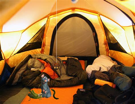 permanent tent the tent has two windows on each side to keep space inside