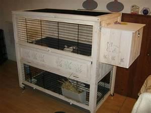 Maison Pour Lapin : clapier lapin bois fait maison images ~ Premium-room.com Idées de Décoration