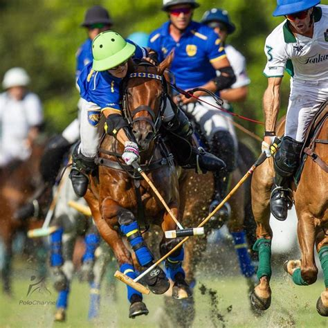 polo most action goal wait some play