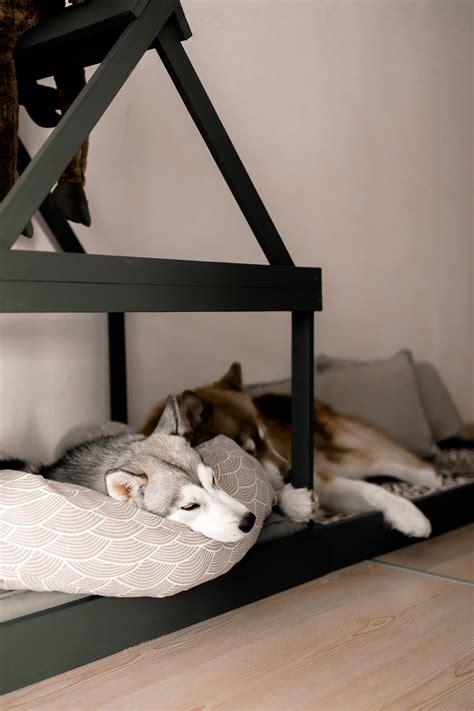 Hundehütte Für Die Wohnung by Hundeh 252 Tte Selber Bauen Fkh