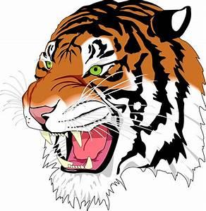Sumatran Tiger Man