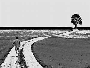 Weiß Zu Schwarz : der weg ist das ziel stra e baum landschaft schwarz ~ A.2002-acura-tl-radio.info Haus und Dekorationen