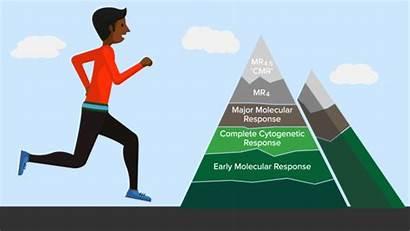 Cml Treatment Pcr Goals