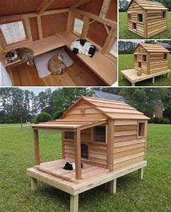 2140 best images about pets pet shelters on pinterest With outside dog shelter
