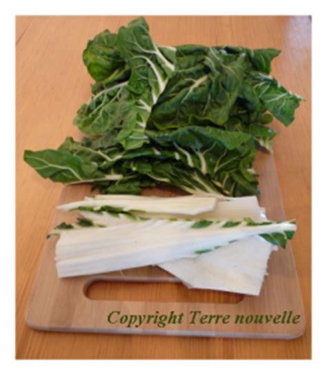 comment cuisiner les feuilles de blettes cuisiner les feuilles de blettes 28 images quiche aux