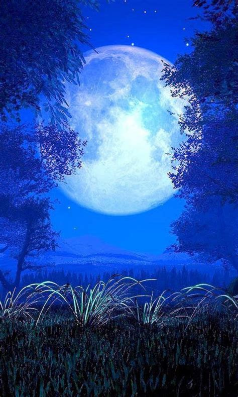Wallpaper Android Phone by Android Phones Wallpapers Android Wallpaper Beautiful Moon