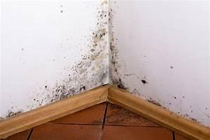 enlever la moisissure With moisissure sur plafond de chambre
