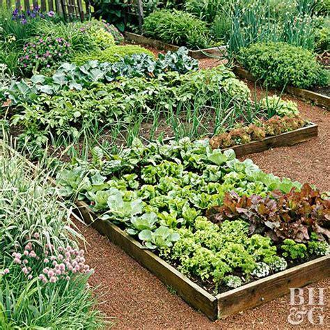 planning your garden planning your first vegetable garden
