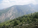 Mount Lebanon - Wikipedia