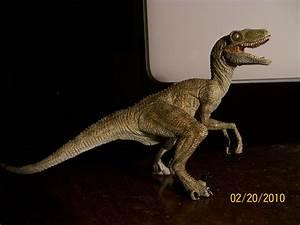 Velociraptor (Papo) – Dinosaur Toy Blog  Velociraptor