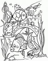 Coloring Fish Pages Tropical Tank Printable Colouring Adults Sheets Realistic Drawing Aquarium Fishing Adult Ocean Kid Clipart Bang Activity Books sketch template