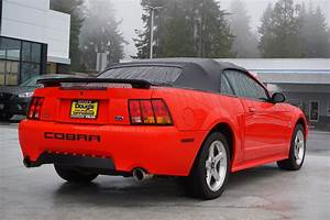 Pre-Owned 2001 Ford Mustang SVT Cobra Convertible