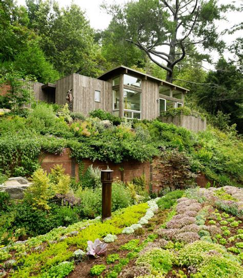 cabin landscaping ideas mill valley cabins addition set in a picturesque landscape