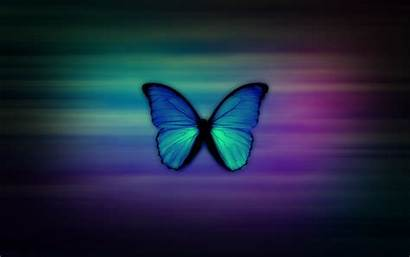 Girly Wallpapers Backgrounds Butterfly Dektop Computer Pixelstalk