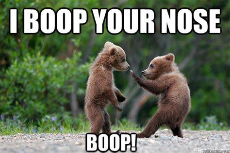 Boop Meme - image gallery boop memes