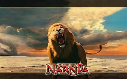 Aslan Narnia Chronicles Lion Witch Background Wardrobe
