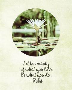 Zen Flower Wate... White Water Lily Quotes