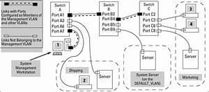 special vlan types With types of switches