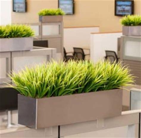 modern office cubicle design artificial office plant viendoraglass com