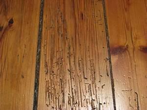reparer un parquet en bois massif bricolagefmguide du With reboucher trou parquet