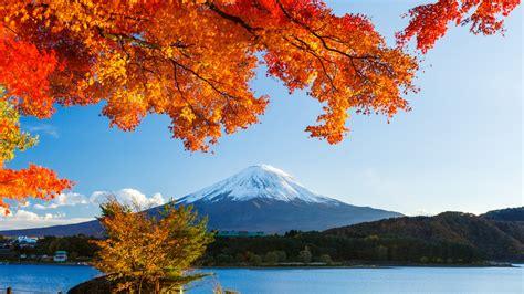 Autumn Wallpapers Hd by Autumn Trees Winter Mountain Hd Wallpaper Wallpaper