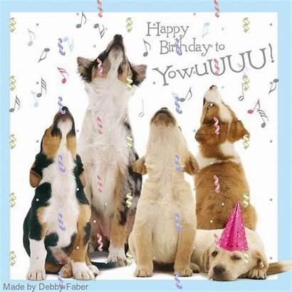 Birthday Happy Puppy