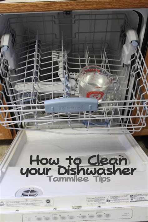 how to clean a dishwasher homemade natural cleaner recipes the idea room