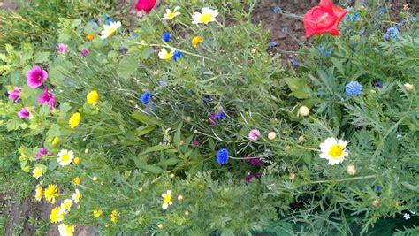 Der Umwelt Inspiriert Naturgarten Anlegen by Gartengestaltung Naturgarten Im Einklang Mit Der Natur