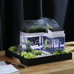 Aquarium De Bureau En Forme De Maison