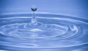 Free Images : water, droplet, drop, liquid, wave, petal ...