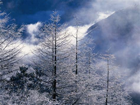 Beautiful Winter Wallpaper Hd by Beautiful Winter Landscapes Wallpapers Hd Wallpapers
