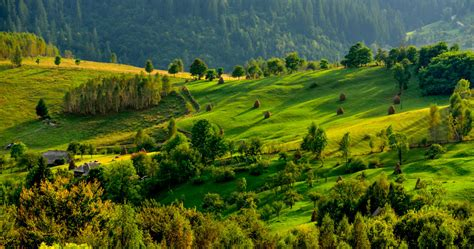 The most spectacular national parks in Romania - Business ...