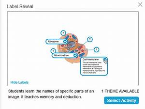 Creating A Label Reveal Activity In Smart Notebook 18