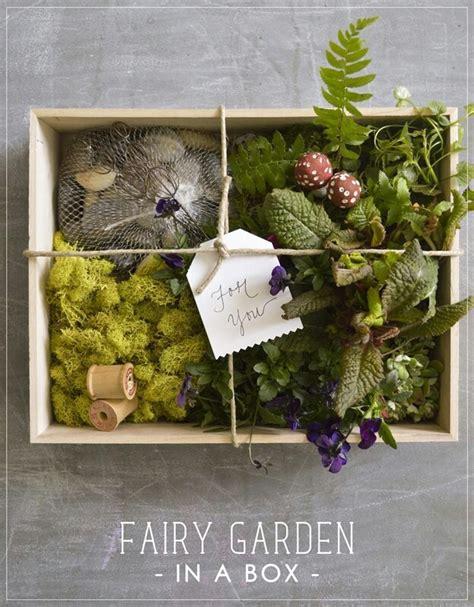 fairy garden in a box quotes pinterest