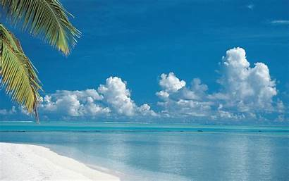 Tropical Beaches Islands Cook Wallpapers Wide Pc