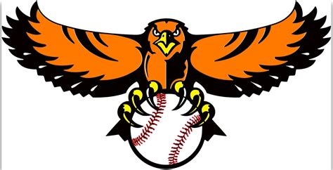 houston hawks baseball