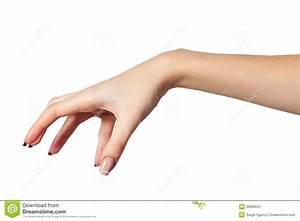 Female Hand Reaching For Something On White Stock Image ...