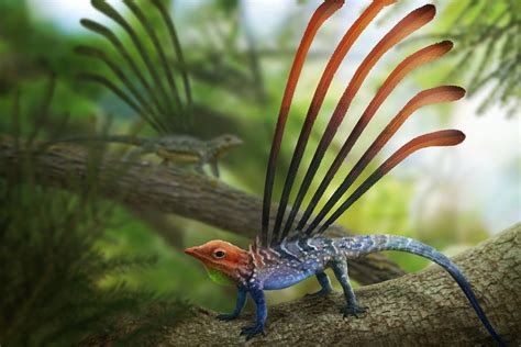 10 of the Weirdest Prehistoric Creatures