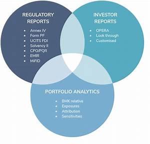 AIFMD Risk Management & Regulatory Reporting - DMS Governance