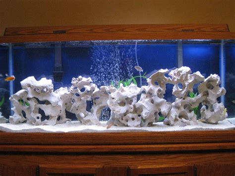 cichlid forum white rocks with holes holey rocks where to buy
