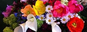Aktuelle Blumen Im April : blumen april mai fiorella blumengesch ft ~ Markanthonyermac.com Haus und Dekorationen