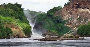 custom uganda travel safaris habitat